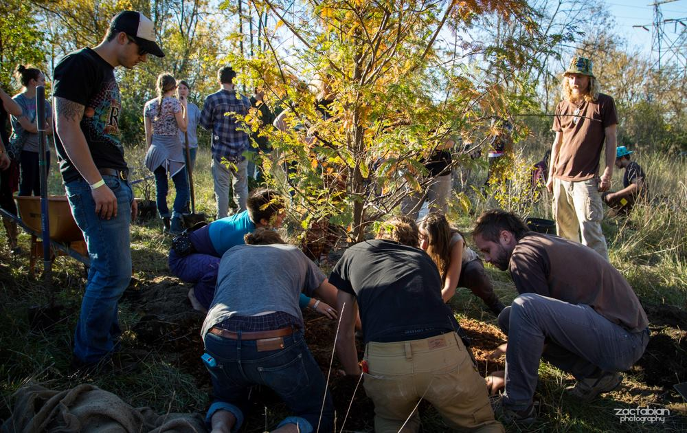 Permaculture Action Day: planting trees