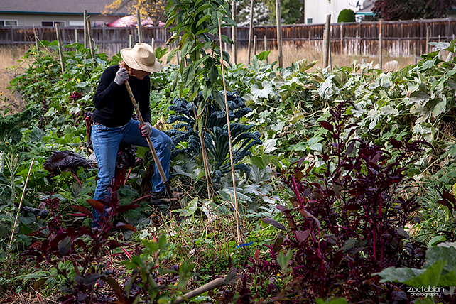 Permaculture Action Tour in Boise.