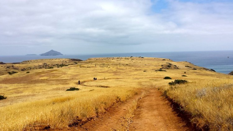 The wide expansive fields of Santa Cruz island. Photo by: Kalideva Dharma