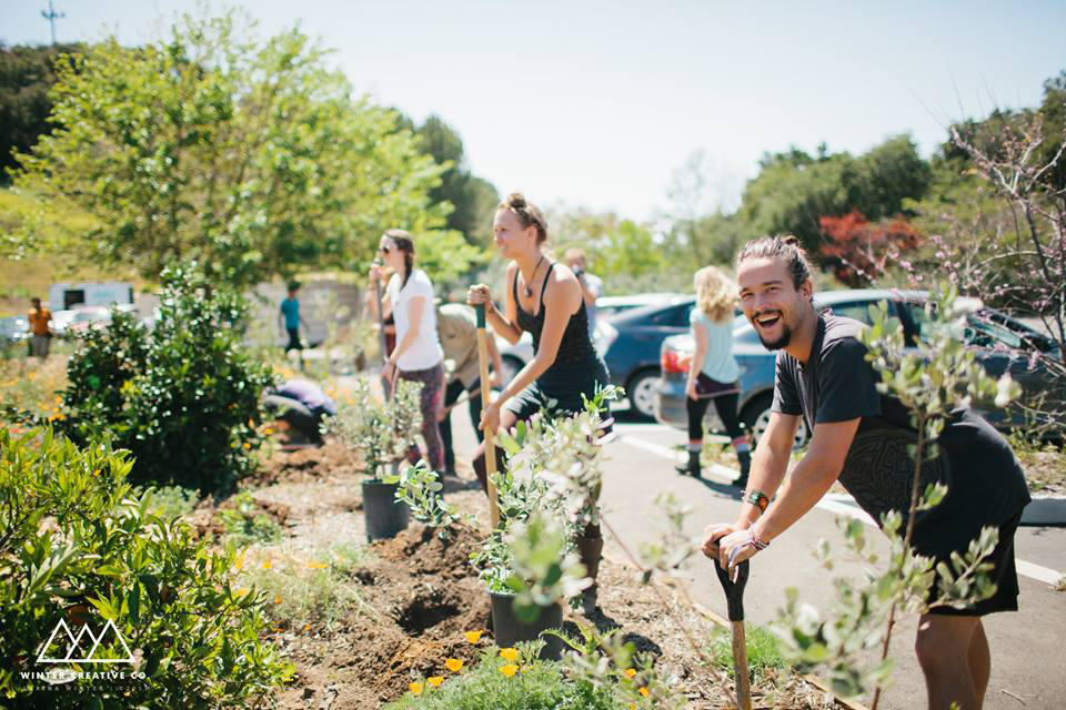 Finding your role in a garden or a community
